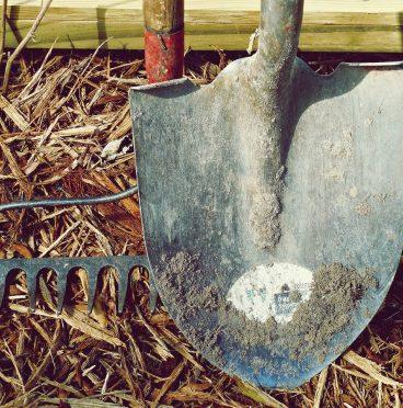 dirt, farm, garden